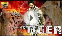 Tiger (2016) Full Hindi Dubbed Movie | South Indian Movies